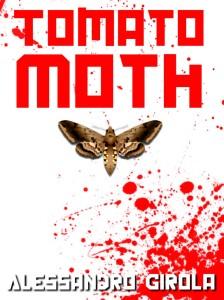 tomato moth 2