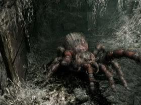ragno gigante 2