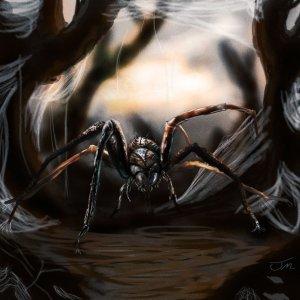 Ragno gigante