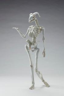 MAENAD scheletro