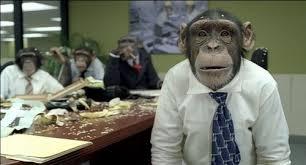 Blogging da scimmie