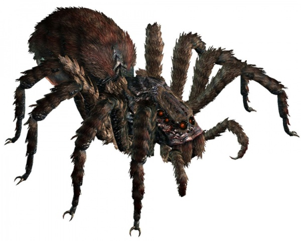 giant-spider